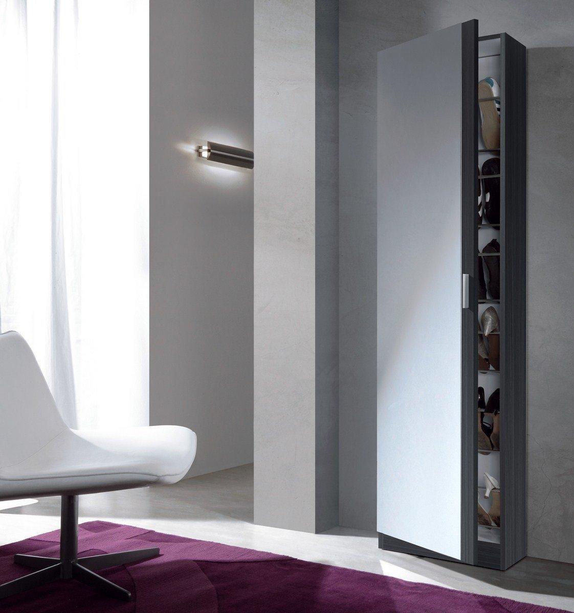 Mueble zapatero con puerta cristal espejo armario for Mueble zapatero gris