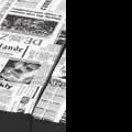 Negro-Periódico