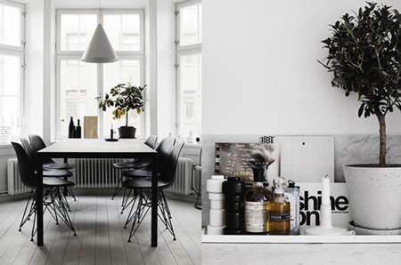 therese_sennerholt_apartamento_4