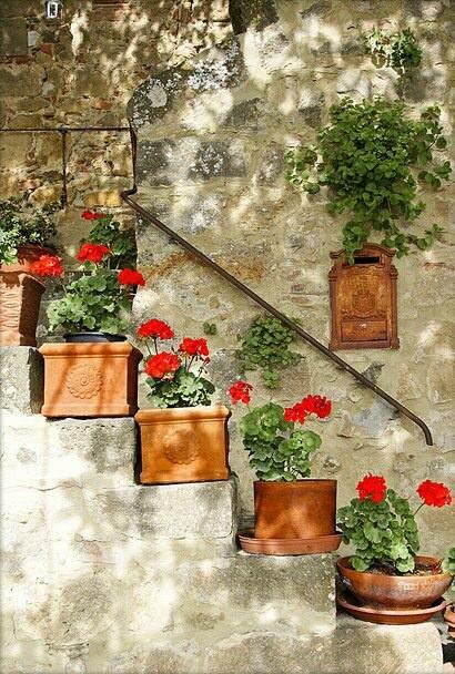 ideas_arreglos_florales_verano_geranio_5