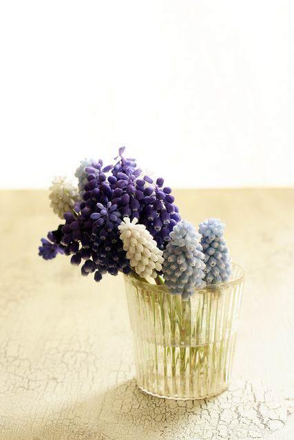 ideas_arreglos_florales_verano_jacinto_9