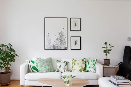 decorar_plantas_motivos_vegetales_1