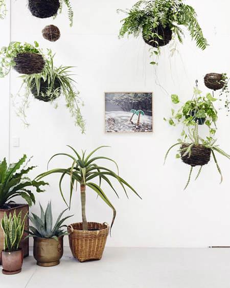 decorar_plantas_motivos_vegetales_16