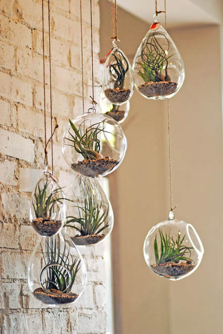 Es tendencia en decoraci n plantas y motivos vegetales - Ideas para decorar paredes con plantas ...