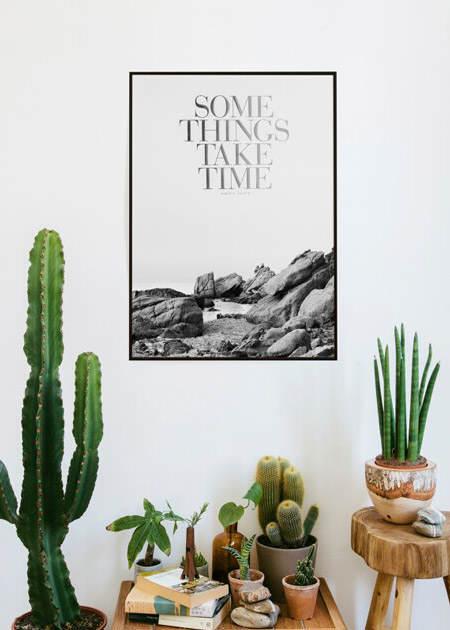 decorar_con_cactus_10