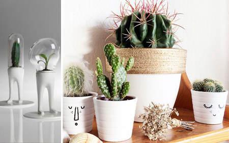 decorar_con_cactus_13