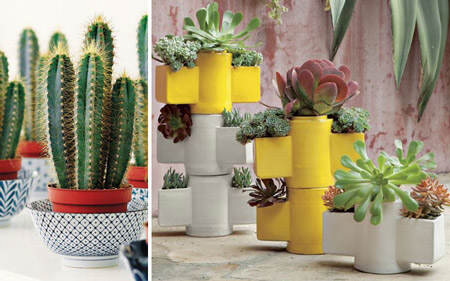 decorar_con_cactus_18