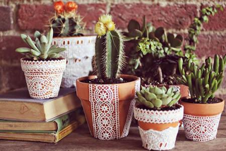 decorar_con_cactus_23