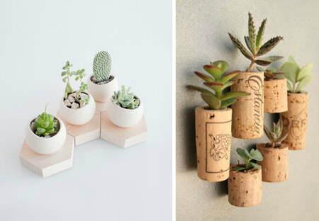 Ideas para decorar con cactus El Blog de DueHome El Blog de Due