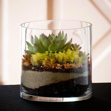 Ideas para decorar con suculentas el blog de due home - Como construir un terrario ...