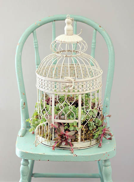 succulentbirdcageplanterindoorscraftberrybush1