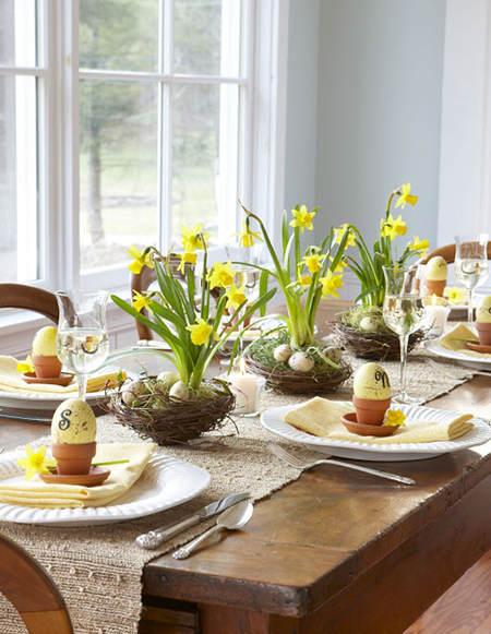 daffodil table top