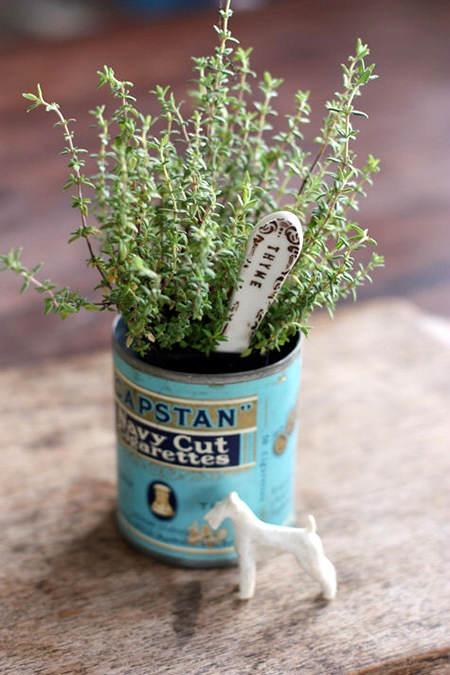 planta-en-lata-vintage