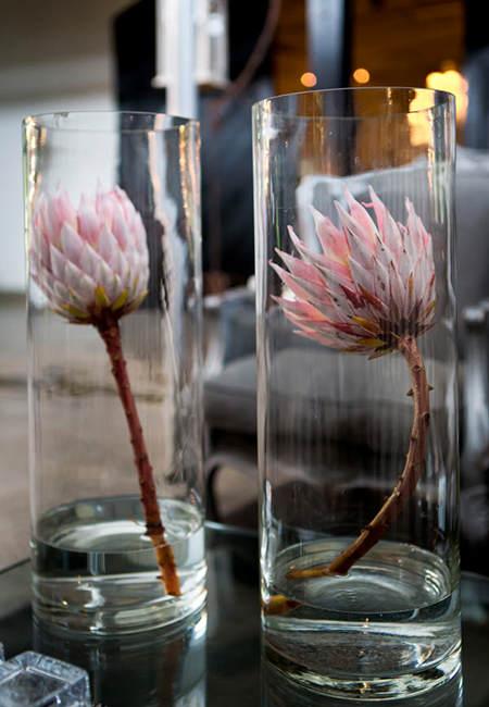 57092-protea-flowers-wedding-decor-at-molenvliet