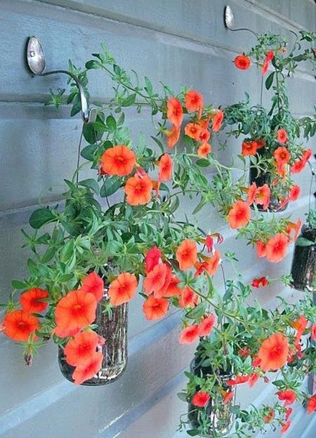 arreglos_florales_verano_5_1