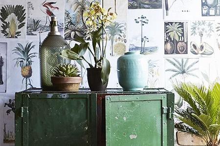 Inspiraci n de color decorar con verde bosque el blog for Inspiracion sinonimo
