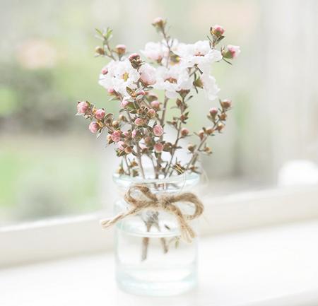 flores_primavera_6