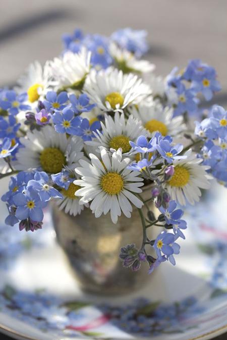 flores_primavera_9