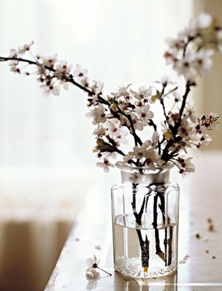 decorar con flores de primavera