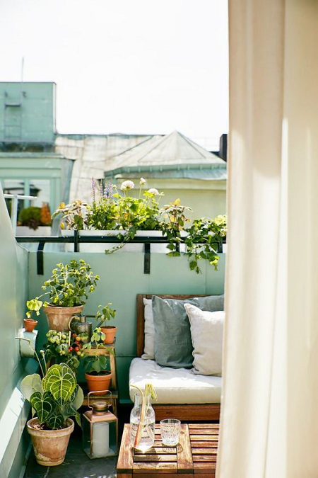 balcones monos